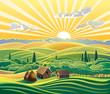 Rural landscape - 72044762