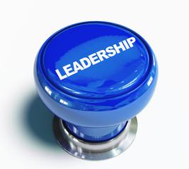 Pulsante leadership