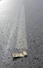 Dollar on the middle of the road