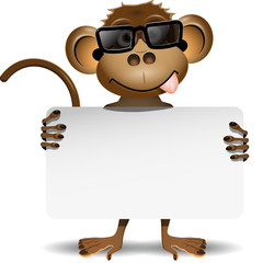 monkey with sunglasses