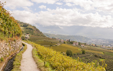 Meran, Vinschgau, Waalweg, Algund, Weinberge, Herbst, Italien