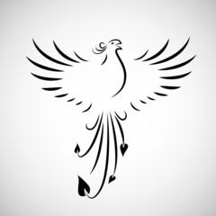 phoenix schreit