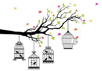 free birds and birdcages, vector illustration