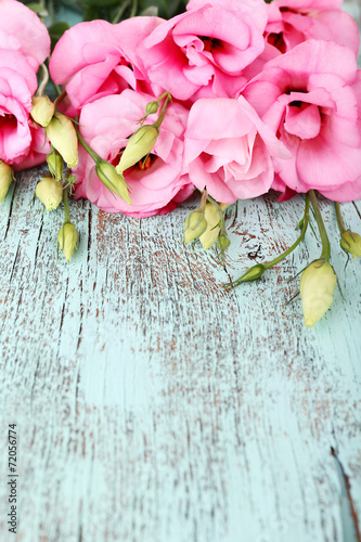 canvas print picture Beautiful eustoma flowers on wooden background