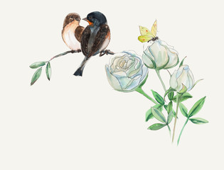 Two birds on white roses.