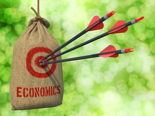 Economics - Arrows Hit in Red Mark Target.