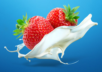 Two strawberries falling into milk splash isolated on blue backg
