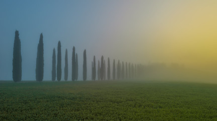 Orcia valley in the misty morning, Tuscany, Italy