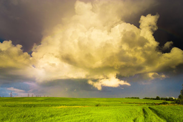 Dark Horizon Tornado Coming