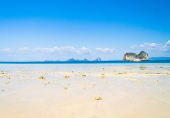 Idyllic Vacation Beach Holiday