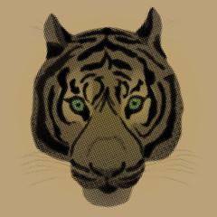 A raster illustration of a tiger