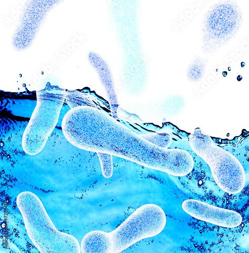 Plakát Legionella bacteria