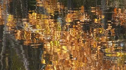 水面に映りこむ紅葉