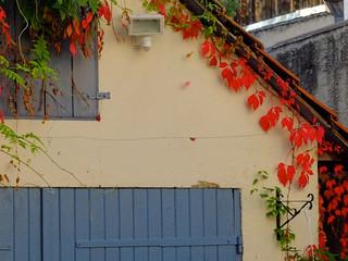 Herbstlich Blätter