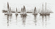 regatta - 72069987