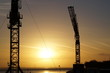canvas print picture - Crane and sunset