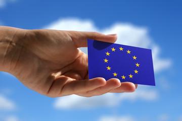 small flag of European Union