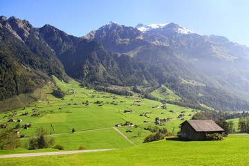 Gorgeous view of Alpine meadow in Switzerland