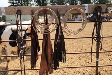 accessori per il cavallo