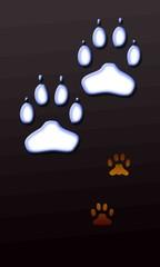Pattes de chien et chat dans le noir
