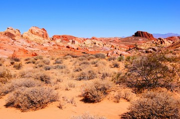 Scenic red desert, Valley of Fire State Park, Nevada