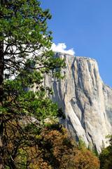 Yosemite national park. California. USA.
