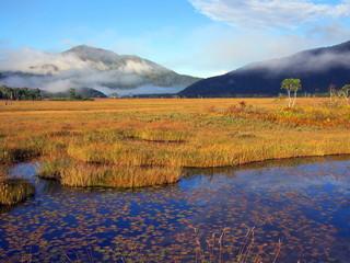 尾瀬ヶ原と池塘