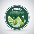 forest camping design