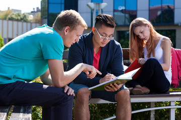 International students learning together outside