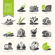 Spice icon set - 72087703