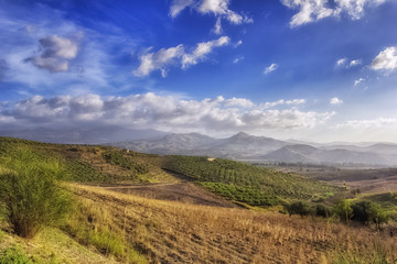 panorama of fields and olive groves in Sicily