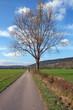 canvas print picture - Herbstlandschaft