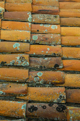 Old Roof Tiles texture