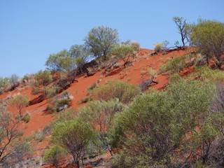 View of the outback of Australia with the red earth