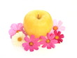 黄色い林檎