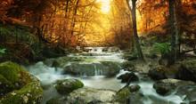 """Постер, картина, фотообои """"forest waterfall"""""""