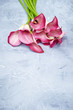 canvas print picture - Flowers