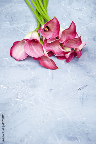 canvas print picture Flowers