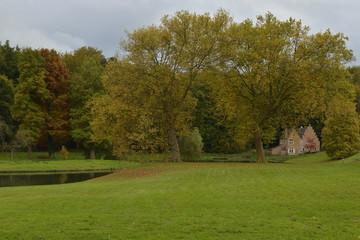 Verdure automnale au parc de Tervuren