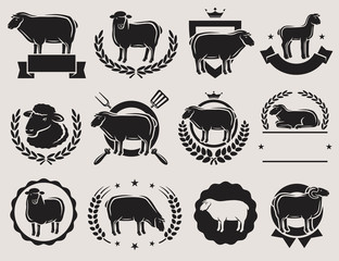 Sheep and lamb labels set. Vector
