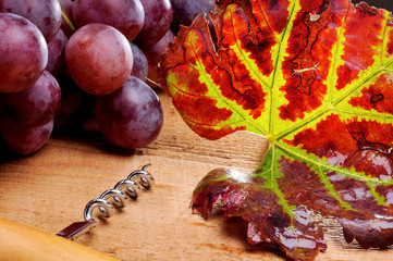 Bunch of grapes and corkscrew