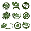 Mint leaves label set. Vector - 72103552