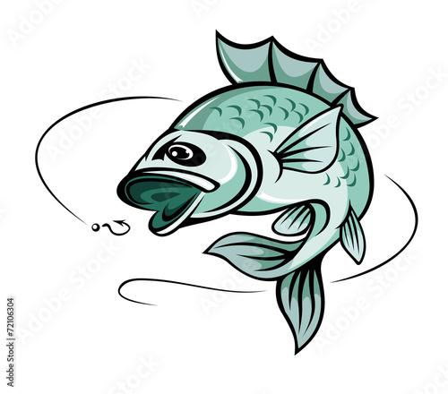Carp fish - 72106304