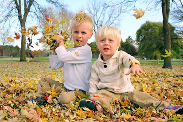 Two Little Boys Playing Outside Throwing Fall Leaves
