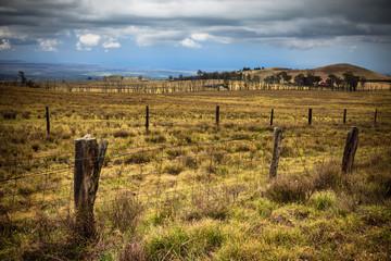 Rural Hawaiian Landscape