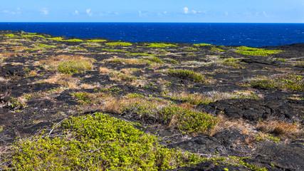 Volcanoes National Park Coast in Hawaii