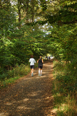 Joggen im Wald