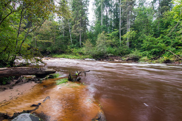 Mountain river with Flowing Water Stream and sandstone cliffs