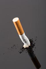 Cigarette butt on gray