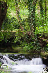 Cascade in Galicia